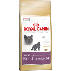 Royal Canin British Shorthair 34 4kg kassitoit