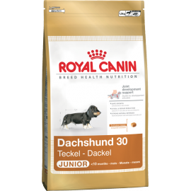 Royal Canin Dachshund 30 junior 3kg  koeratoit