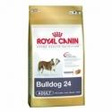 Royal Canin Bulldog 24 Adult 12 kg koeratoit