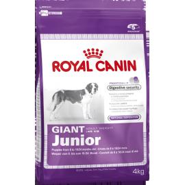 Royal Canin Giant Junior 3x 18kg koeratoit