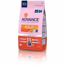 ADVANCE Cat Adult Salmon&Rice 15kg kassitoit