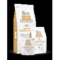 Brit Care Senior & Light Salmon & Potato koeratoit 12kg