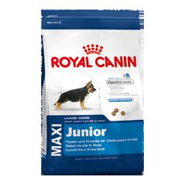 Royal Canin Maxi Junior 15kg koeratoit