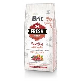 Brit FRESH koeratoit Beef & Pumpkin for Large Breed Puppies 2,5kg