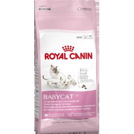 Royal Canin Babycat 34 2kg kassitoit