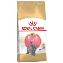Royal Canin Kitten British Shorthair kassitoit 2kg