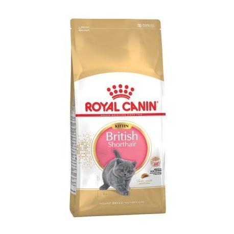 Royal Canin Kitten British Shorthair kassitoit 2kg