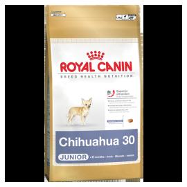 Royal Canin Chihuahua puppy 4x0,5kg koeratoit