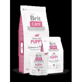 Brit Care Puppy Salmon & Potato koeratoit 3kg