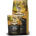 CARNILOVE Salmon & Turkey Large Breed Adult koeratoit 12kg