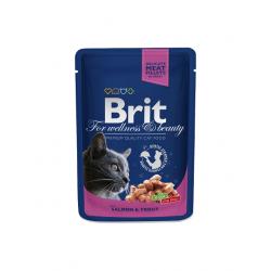 Brit Premium kassikonserv Salmon & Trout 24x100g
