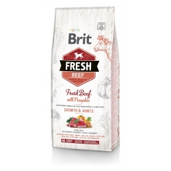 Brit FRESH koeratoit Beef & Pumpkin for Large Breed Puppies 12kg