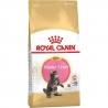 ROYAL CANIN FHN Mainecoon Kitten kassitoit 2kg