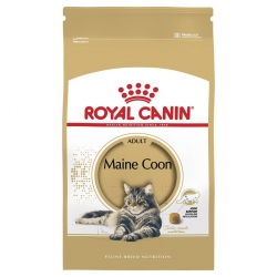 Royal Canin Maine Coon 31 10kg kassitoit