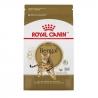 Royal Canin FBN BENGAL kassitoit 2kg