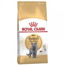 Royal Canin British Shorthair 34 4kg kassitoit