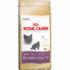 Royal Canin British Shorthair 34 2kg kassitoit