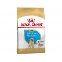Royal Canin Labrador Retriever Puppy 12 kg koeratoit