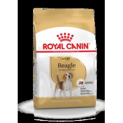 ROYAL CANIN BEAGLE ADULT koeratoit 12kg