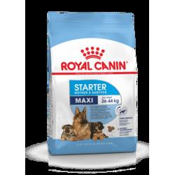Royal Canin Maxi Starter Mother & Babydog 15 kg koeratoit