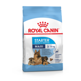 Royal Canin Maxi Starter Mother & Babydog 15 kg koeratoit