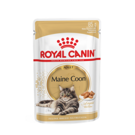 Royal Canin FBN MAINE COON WET kassitoit 12x85g