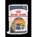 Royal Canin FHN INTENSE BEAUTY in gravy 12x85g kassitoit