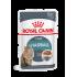 Royal Canin FHN HAIRBALL CARE in gravy 12x85g kassitoit